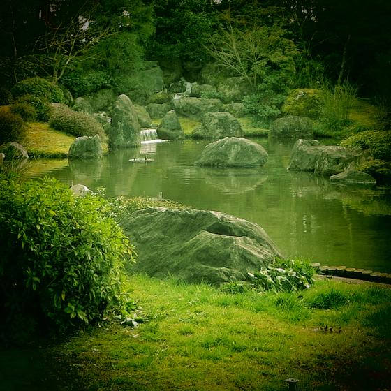 しだれ梅と椿まつり - 34.jpg