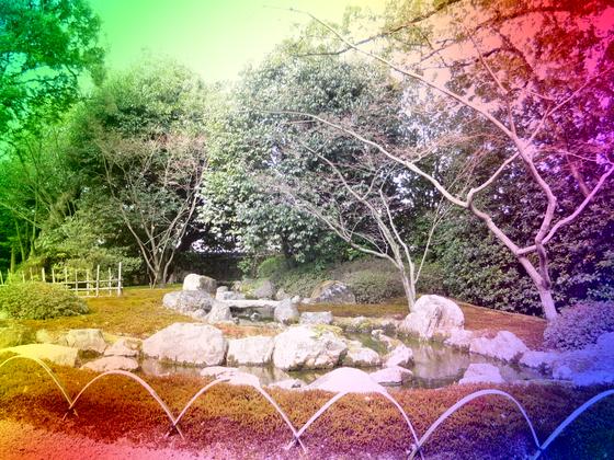 しだれ梅と椿まつり - 35.jpg