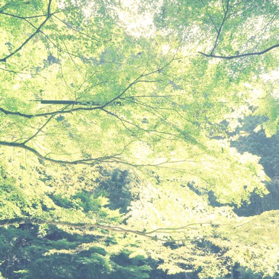 川床 - 39.jpg