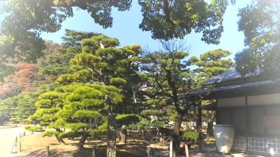 栗林公園 - 03.jpg