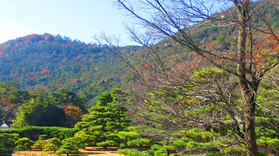 栗林公園 - 07.jpg