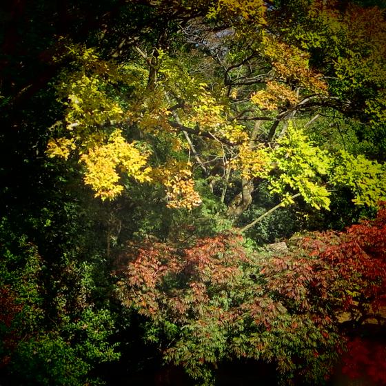 栗林公園 - 14.jpg