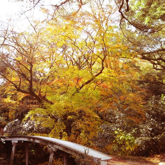 栗林公園 - 17.jpg