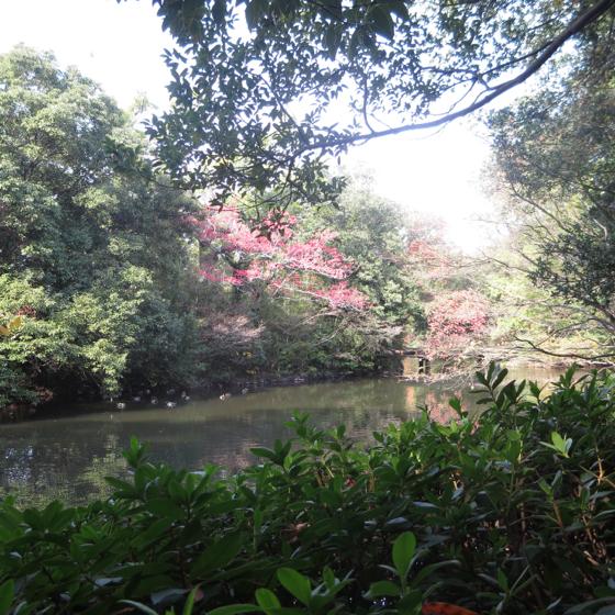 栗林公園 - 32.jpg