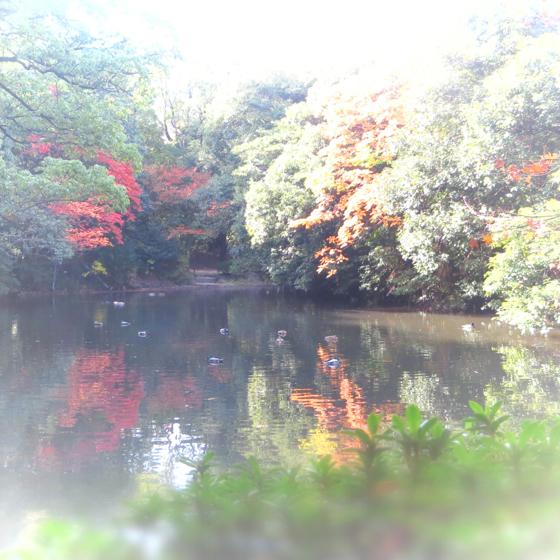 栗林公園 - 33.jpg