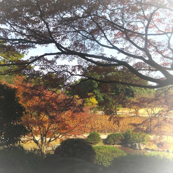栗林公園 - 39.jpg
