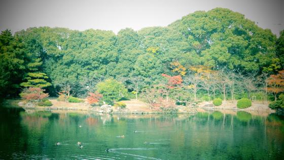 栗林公園 - 40.jpg