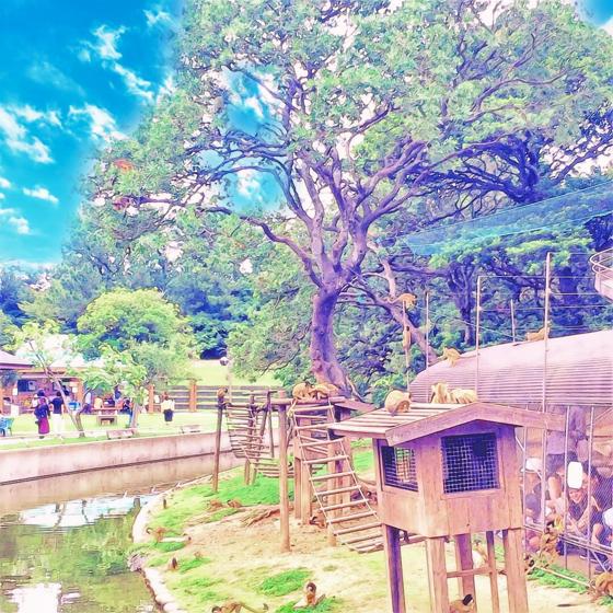 海の中道海浜公園 - 07.jpg