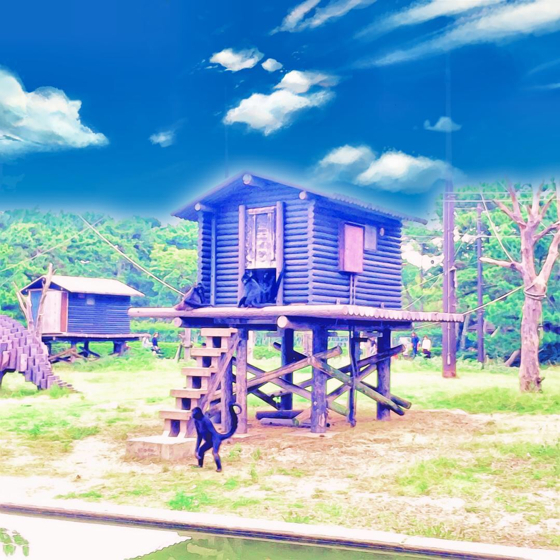 海の中道海浜公園 - 14.jpg