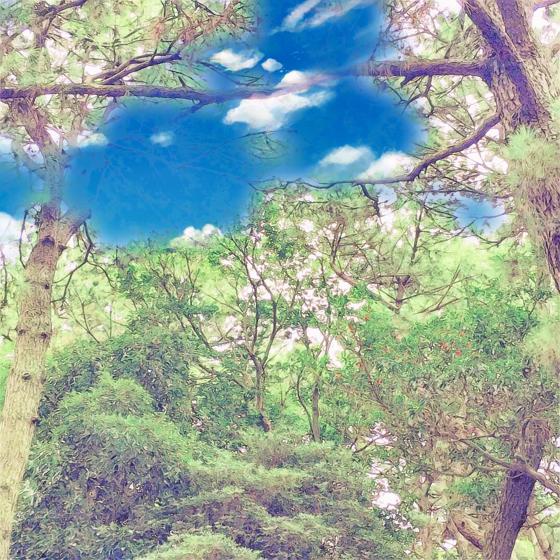 海の中道海浜公園 - 16.jpg
