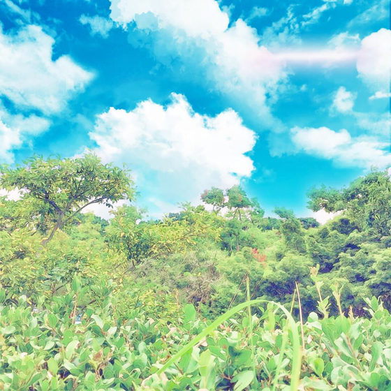 海の中道海浜公園 - 17.jpg