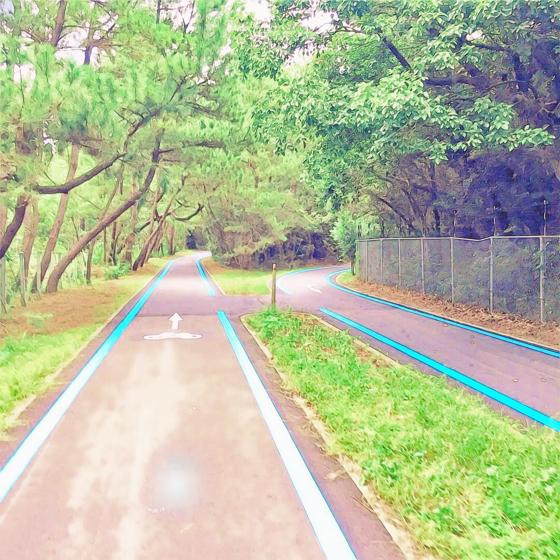 海の中道海浜公園 - 19.jpg