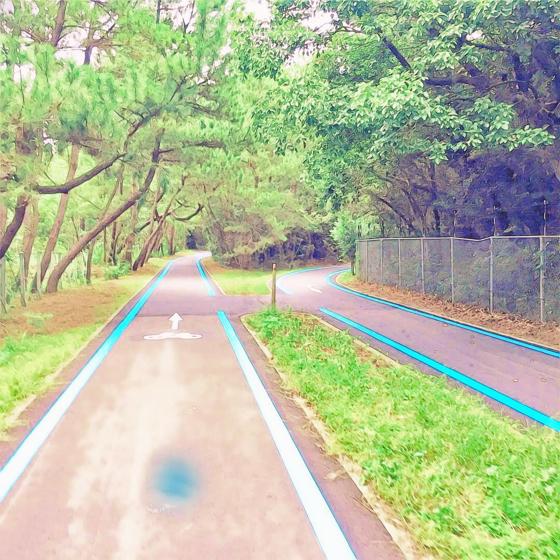 海の中道海浜公園 - 20.jpg